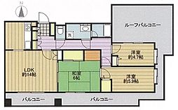 コスモ北戸田[502号室]の間取り