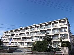 文栄第一ビル[303号室]の外観