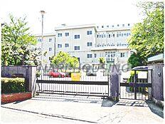 小学校武蔵村山市立 第七小学校まで916m