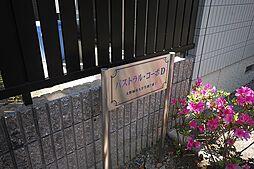 パストラルコーポ[D101号室]の外観