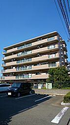 サニーフォレスト藤原弐番館[1階]の外観