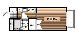 神奈川県横浜市磯子区新杉田町の賃貸マンションの間取り