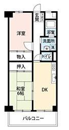 メゾンドセット[3階]の間取り