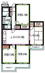 東京都国分寺市西恋ヶ窪3丁目の賃貸マンションの間取り