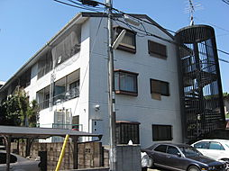 メゾン富田[305号室]の外観