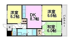 M-PEAKS塚口南(エムピークスツカグチミナミ)[2階]の間取り