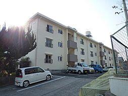 サンハイム山分A棟[205号室]の外観