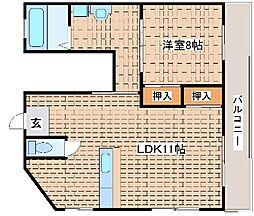 兵庫県神戸市東灘区住吉山手5丁目の賃貸マンションの間取り