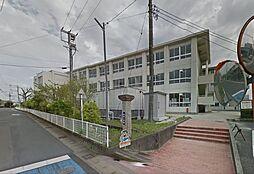 小学校古井小学校まで1104m