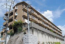 智関第3マンション[2階]の外観