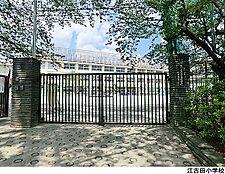 江古田小学校