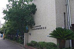 ハイツルミナール立花[3階]の外観