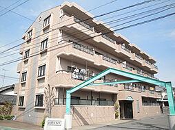 愛媛県松山市小栗4丁目の賃貸マンションの外観