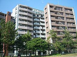 イーストパーク36[5階]の外観
