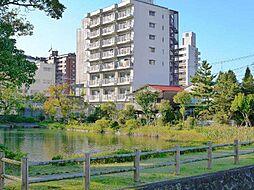 佐賀県佐賀市与賀町の賃貸マンションの外観
