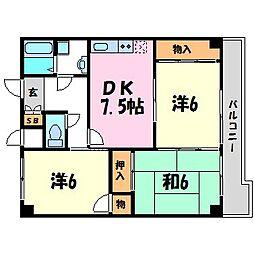 メゾン甲子園口[2階]の間取り