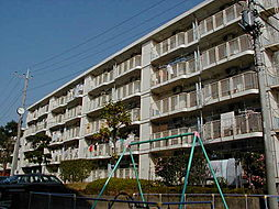 綾瀬寺尾本町[3-3303号室]の外観