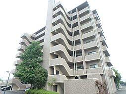 スカール喜多川A棟[305号室]の外観