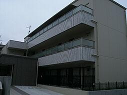 神奈川県川崎市麻生区片平3丁目の賃貸マンションの外観