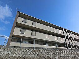 京成本線 公津の杜駅 徒歩19分の賃貸マンション