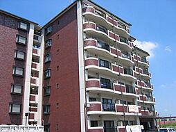 センチュリーアスカ8[3階]の外観
