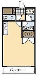 シャンテ城ヶ崎[203号室]の間取り