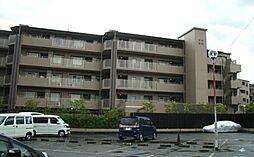 京都市右京区嵯峨新宮町
