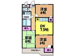 愛媛県松山市保免西1丁目の賃貸マンションの間取り