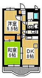 サンライズ桜台[2階]の間取り