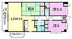 コサ−ジュ衣山[803 号室号室]の間取り