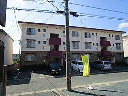 サンシャイン丸松[203号室]の外観