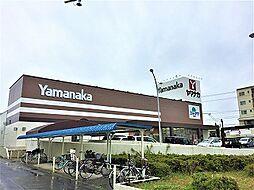 ヤマナカ三郷店 徒歩 約14分(約1100m)