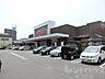周辺,1K,面積24.79m2,賃料2.8万円,,,愛媛県松山市中村3丁目1-29