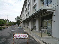市木小学校(約700m)