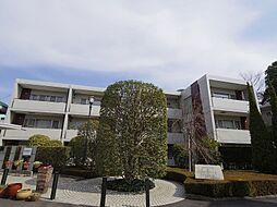 第3ゼルコバマンション[1階]の外観