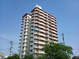手柄コーポ1号館[6階]の外観
