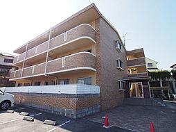 奈良県奈良市帝塚山5丁目の賃貸マンションの外観