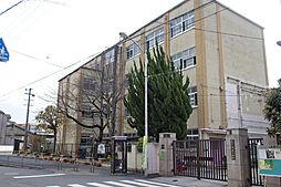 桂川ロイヤルハイツ[5階]の外観