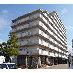 滋賀県野洲市久野部の賃貸マンションの外観