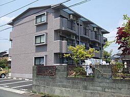 静岡県富士宮市浅間町の賃貸マンションの外観