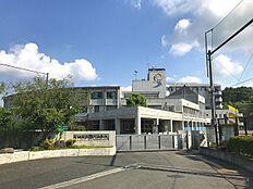 町田市立鶴川中学校まで241m