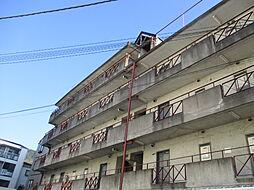 大阪府大東市錦町の賃貸マンションの外観