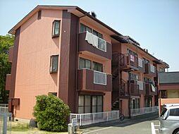 ラフィーネMAYU[2階]の外観