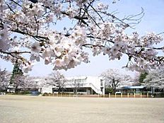 桜南小学校学区です