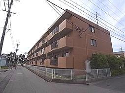 静岡県浜松市南区遠州浜2丁目の賃貸マンションの外観