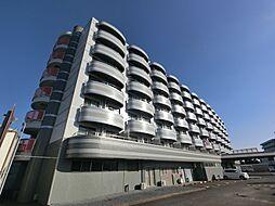 成田スカイアクセス 成田湯川駅 徒歩13分の賃貸マンション