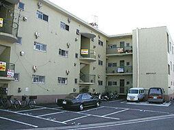 小堀マンション[3階]の外観