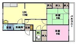 平町マンション[1階]の間取り