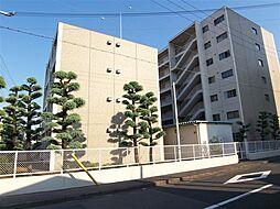 新甲子園マンション[4階]の外観