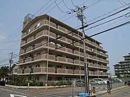 ドミール川崎[403号室]の外観